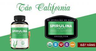 Tảo california bổ sung năng lượng, phục hồi sức khỏe